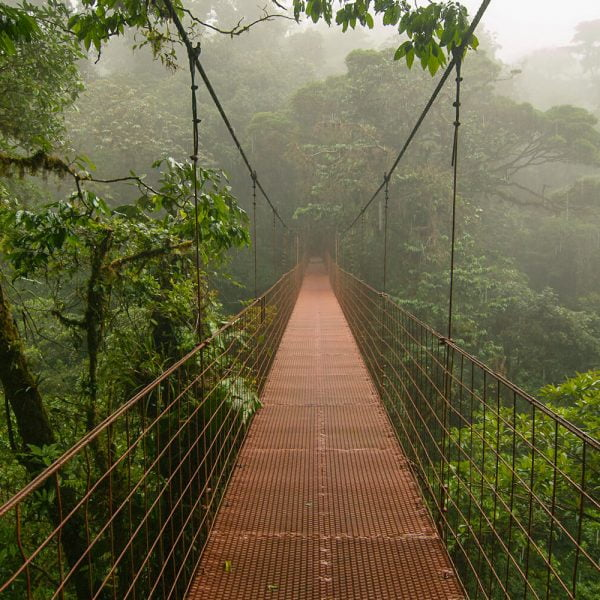 casa-chameleon-bridges-hike